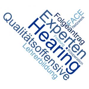 Wordcloud Expertenhearing